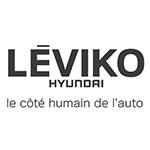 Logo_Leviko
